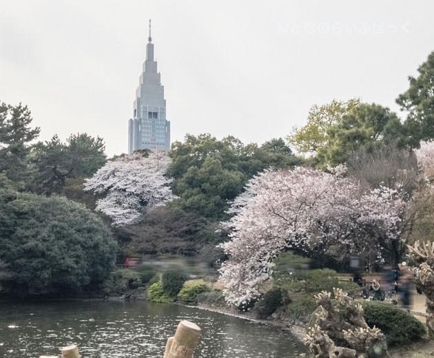 ドコモタワー(NTTドコモ代々木ビル)も見える