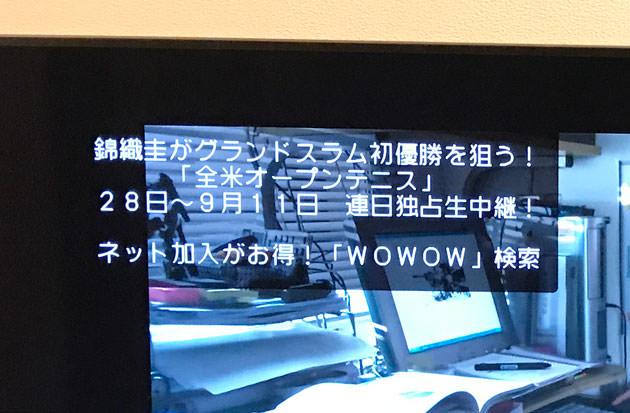加入前はテレビ画面左上にWOWOWへの加入を促すメッセージが表示される