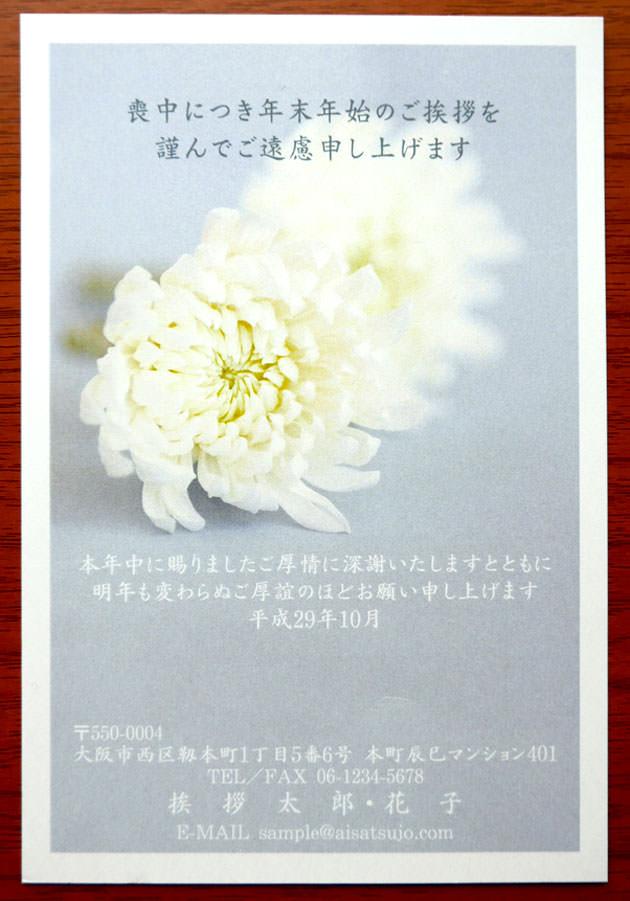 スタイリッシュ「菊」