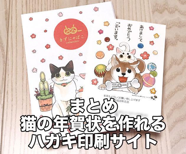 まとめ:猫の年賀状を注文できる印刷サイト6社を比較
