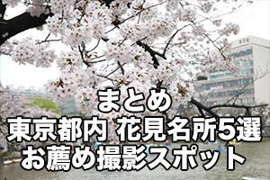 東京都内の桜の名所5選!各地のお薦め撮影スポットはここ!