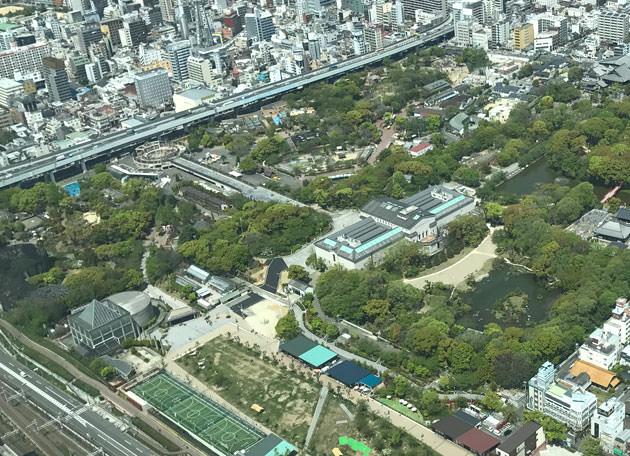 北側:足下には天王寺公園