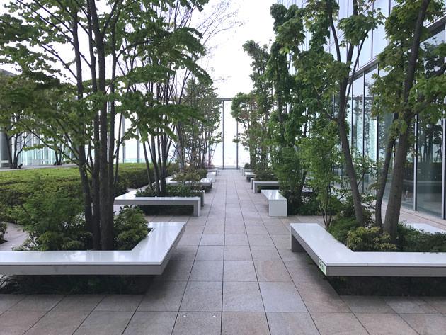 16階庭園の様子