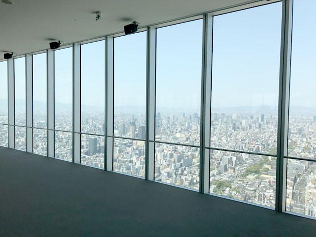 窓ガラスは天井から床まであり、余計な装飾がない
