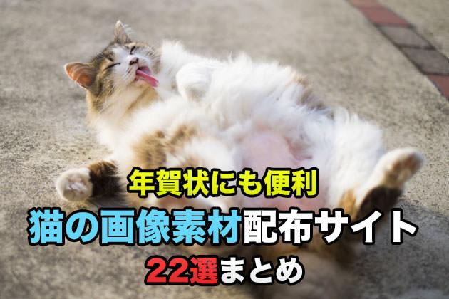 まとめ:年賀状にも便利!猫の画像素材をダウンロードできるサイト22選