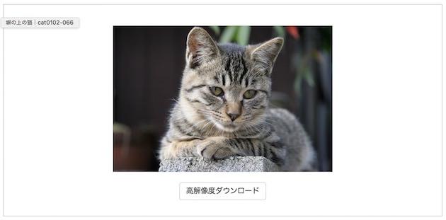 pro.foto(プロ ドット フォト) ダウンロード画面