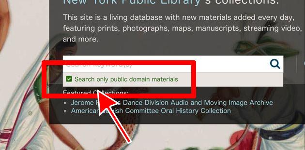 検索窓にあるパブリックドメインのチェックボックス