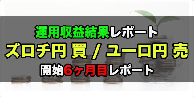 6ヶ月目:ズロチ円買いとユーロ円売り スワップ収益運用レポート