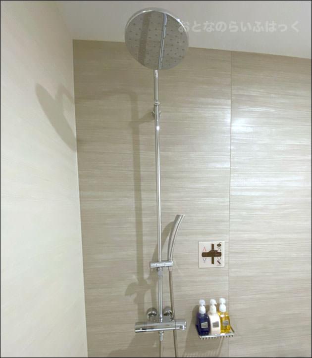 シャワーはハンドシャワーとレインシャワー