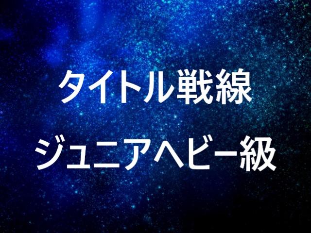 f:id:yosikazukun:20200122194544j:plain