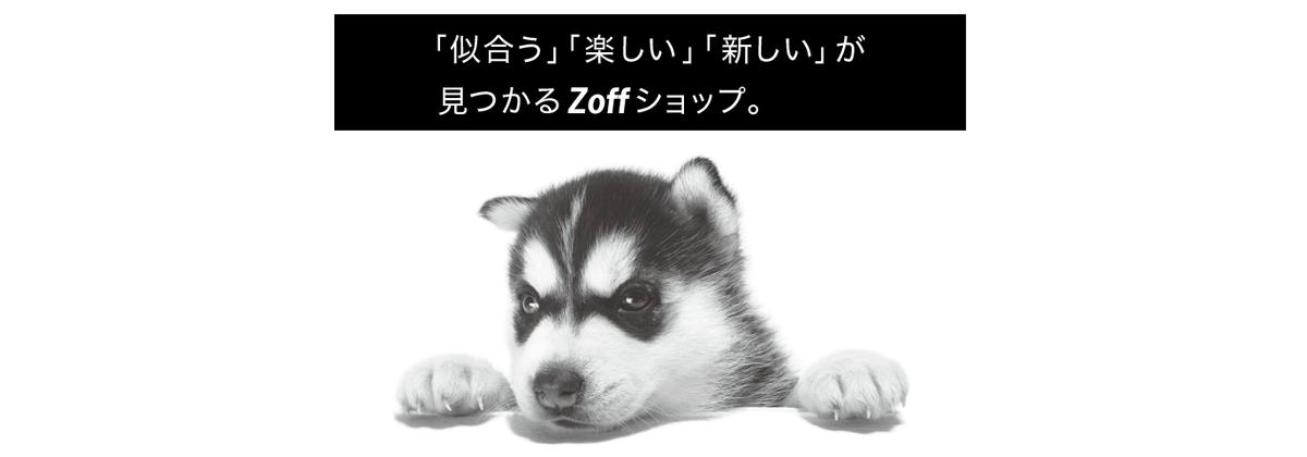 【Zoff(ゾフ)】還元率の高いポイントサイトを比較してみた!