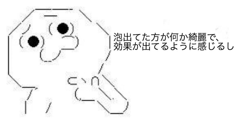 f:id:yositou0729:20190217213335j:image