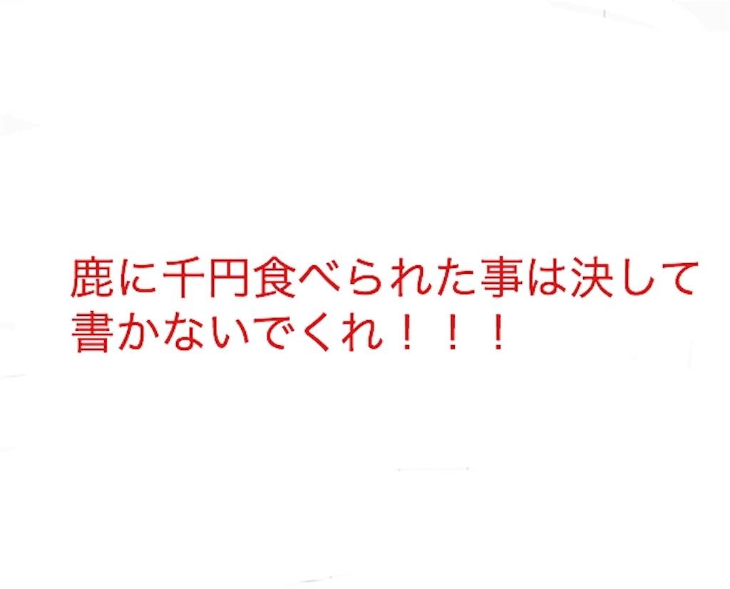 f:id:yositou0729:20190526125800j:image