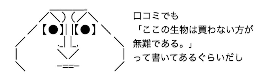 f:id:yositou0729:20190821204845j:image