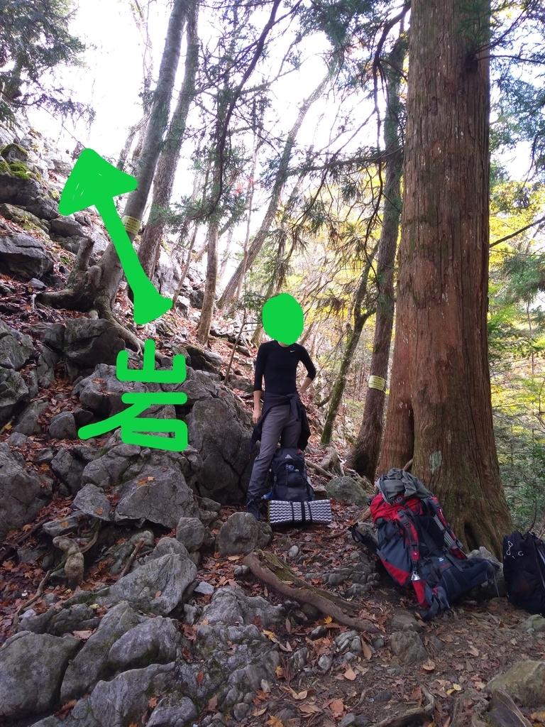 f:id:yosuke-kun:20181113150159j:plain