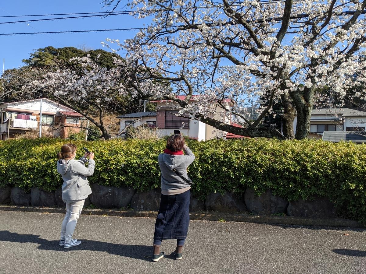 f:id:yosuke_tomita:20200331082506j:plain