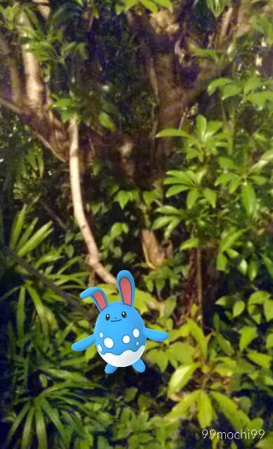 f:id:yota_bro:20170606204320j:image