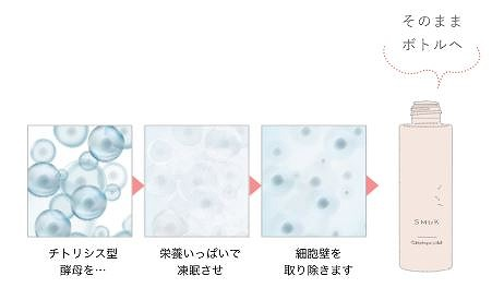 天然酵母エキスが大人肌にやさしく浸透