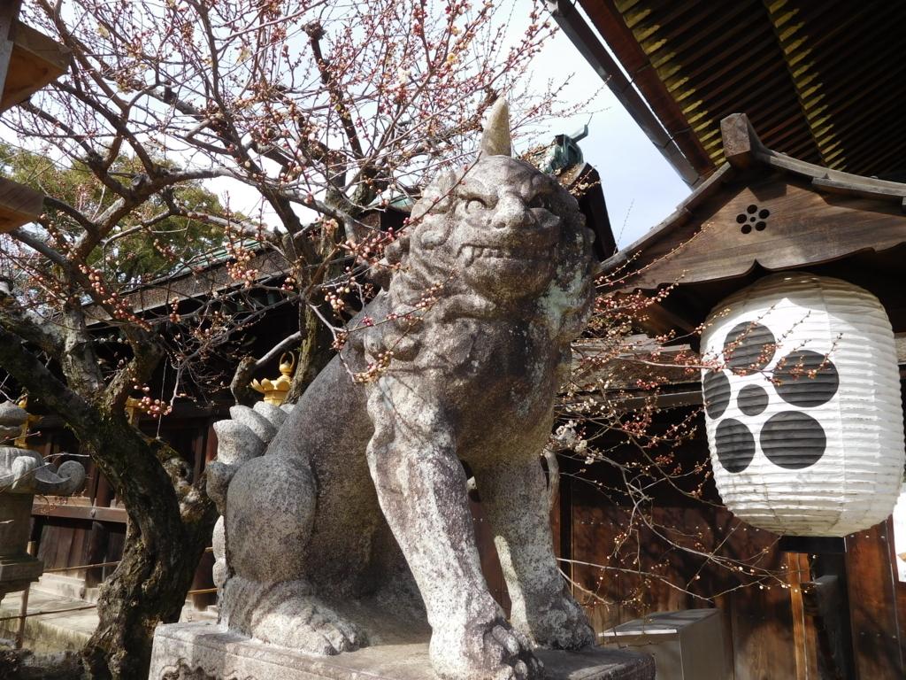 梅と狛獅子ちゃん