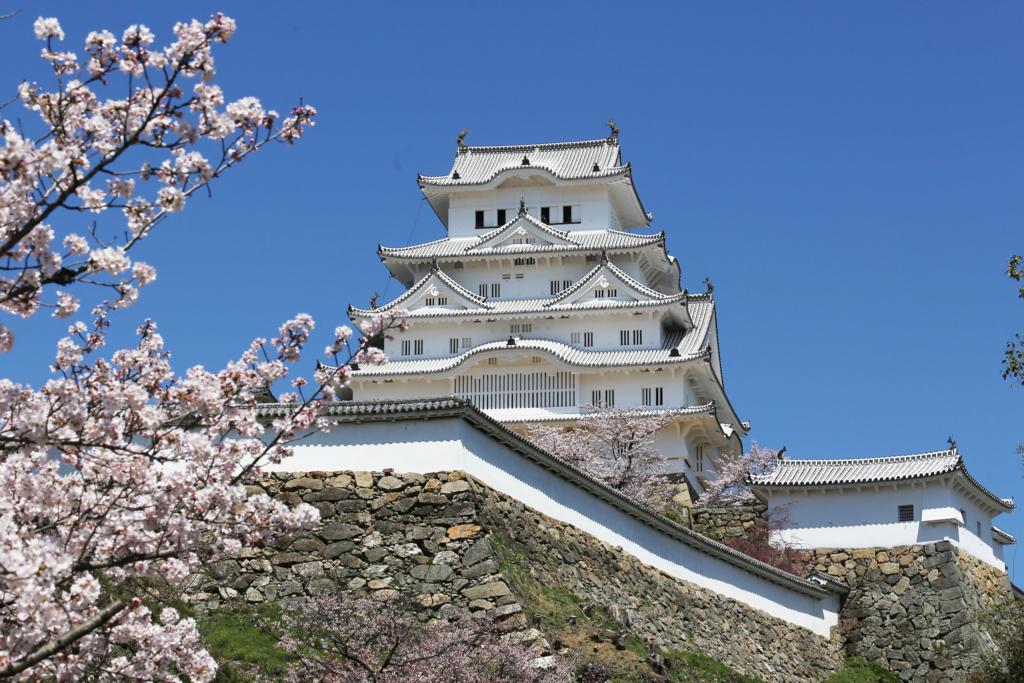 春、桜の姫路城(白鷺城)