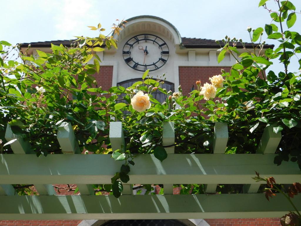 ローズシンフォニーガーデンの薔薇の門