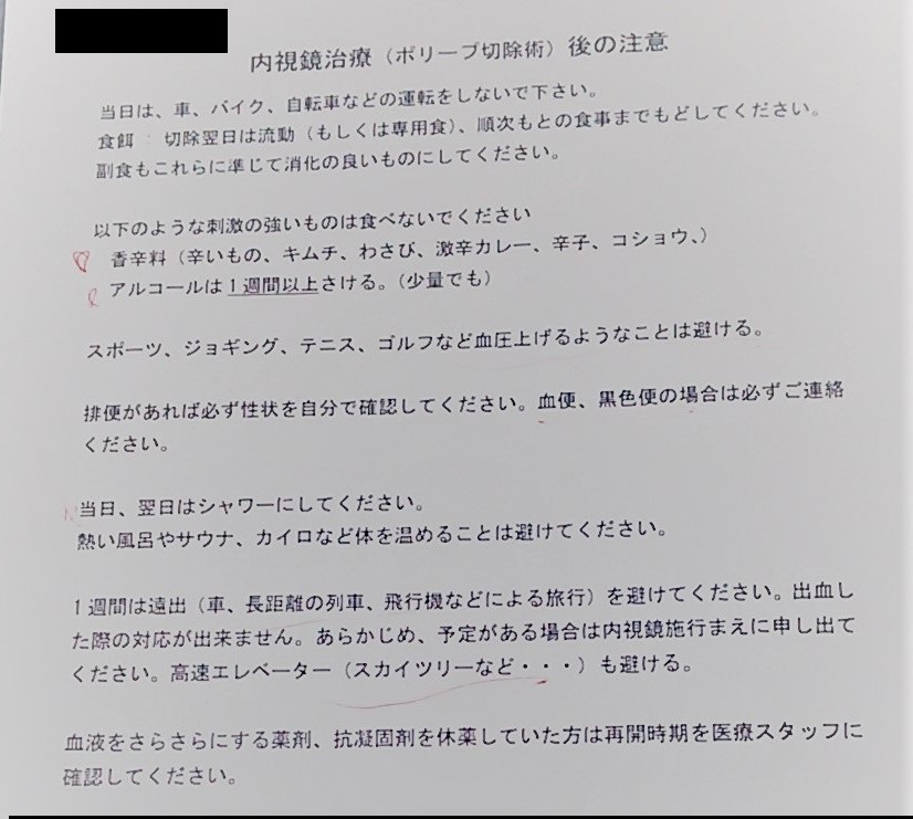 f:id:yotsumao:20190702214108j:plain