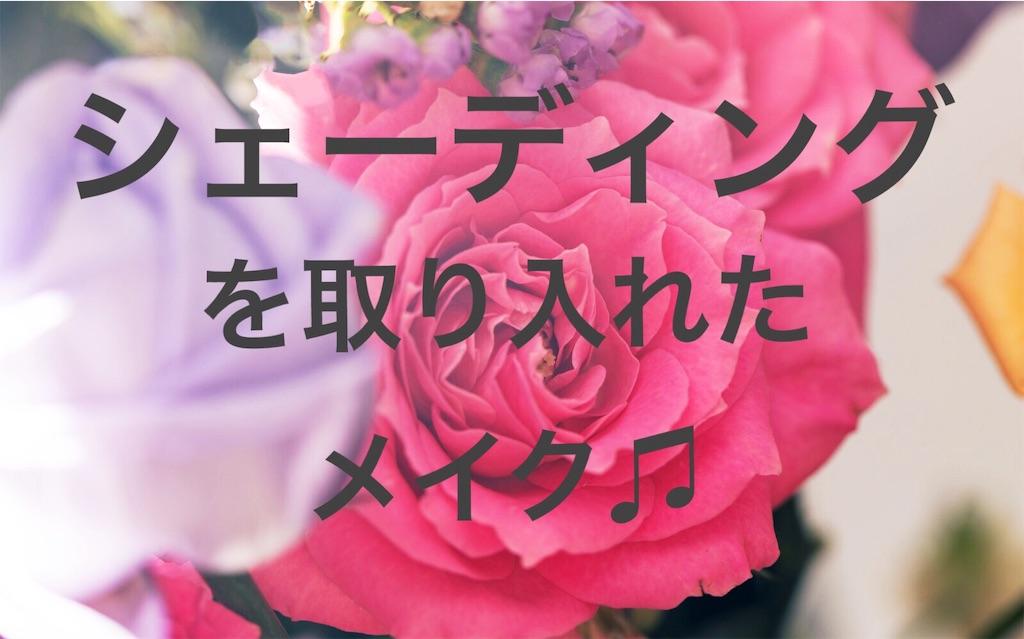 f:id:yottoijo:20190318215843j:image