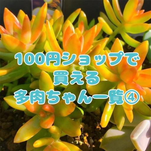 f:id:you-pon:20201205231722j:plain