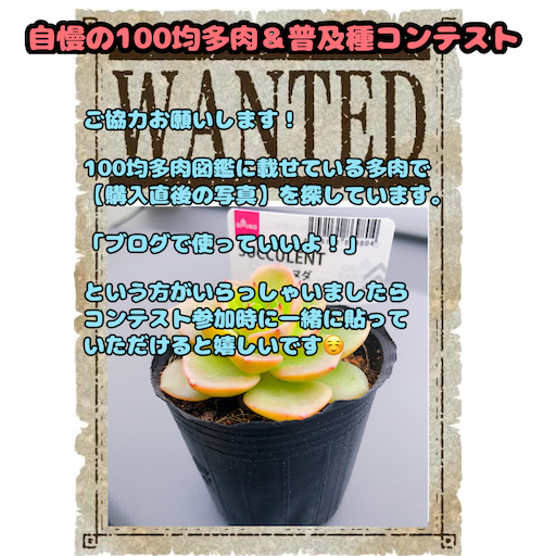 f:id:you-pon:20210417095933p:plain