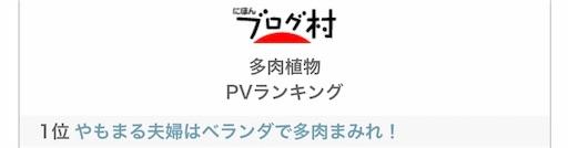 f:id:you-pon:20210512195438j:plain