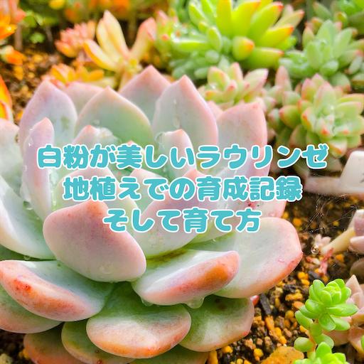 f:id:you-pon:20210609235444p:plain