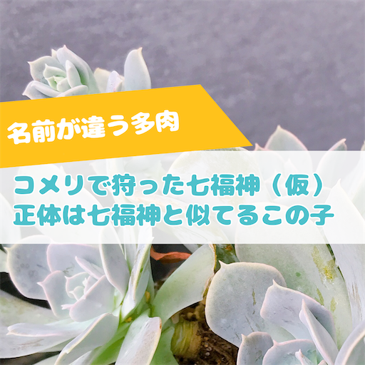 f:id:you-pon:20210712012450p:plain