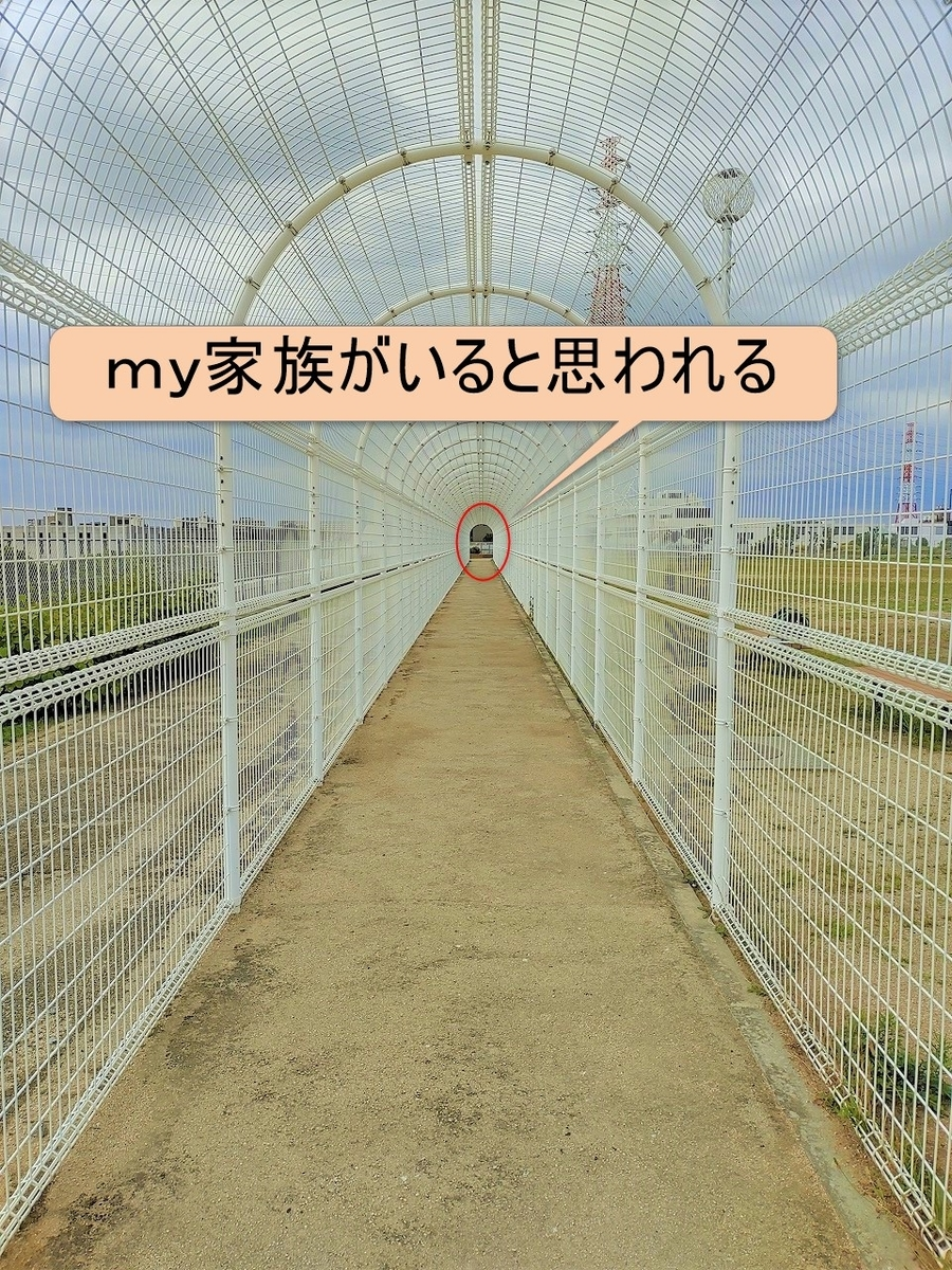 f:id:you-so33:20210614214121j:plain