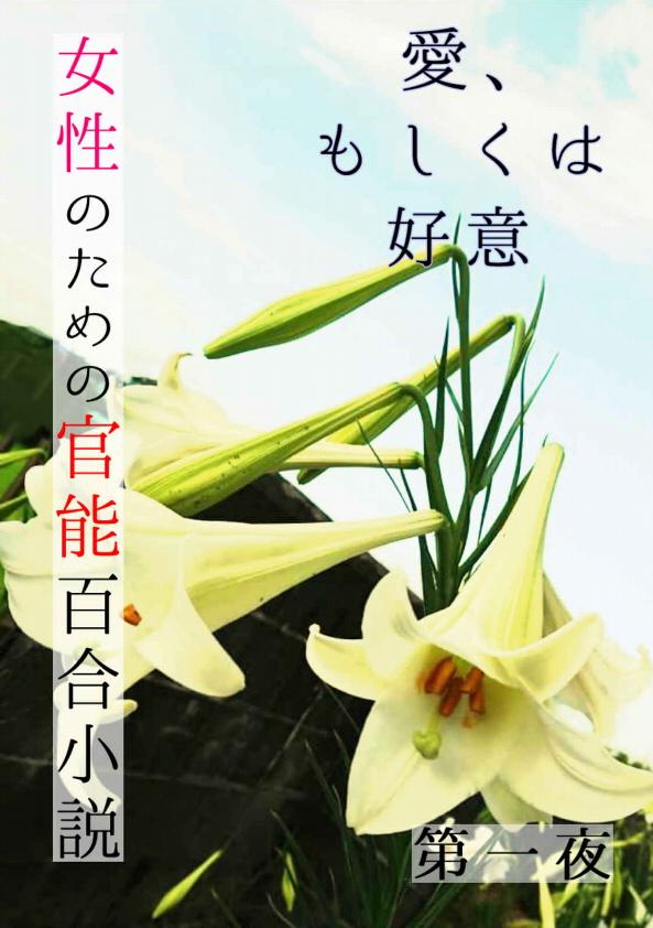 f:id:you_mizushiro:20190521230200j:plain