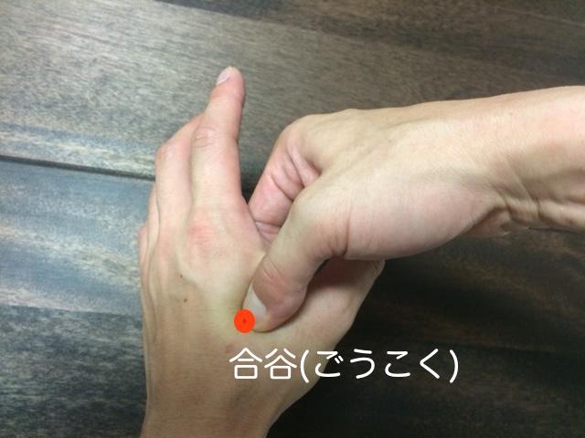 f:id:youchiryoin:20160617071734j:plain