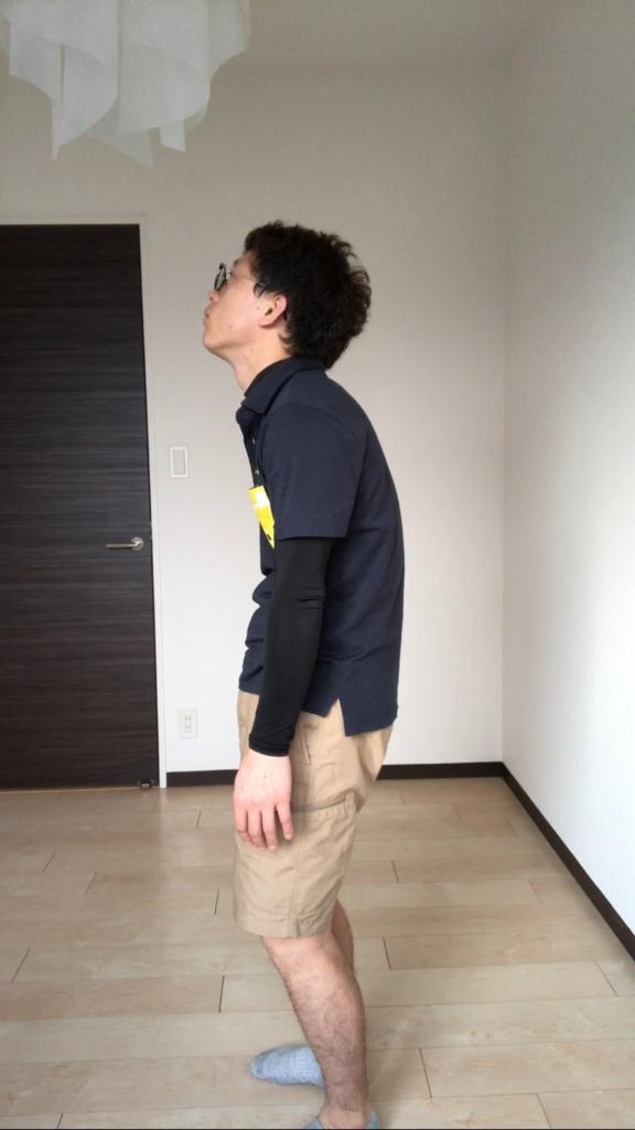f:id:youchiryoin:20170417175221j:plain