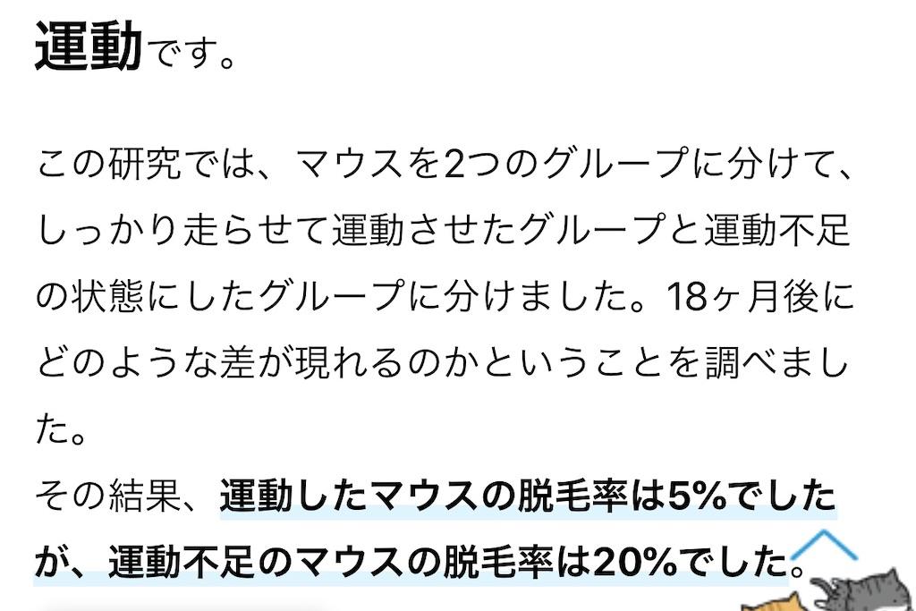 f:id:yougaku-eigo:20200919114721j:image