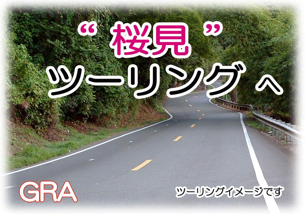 f:id:youkaidaimaou:20190307061702j:plain