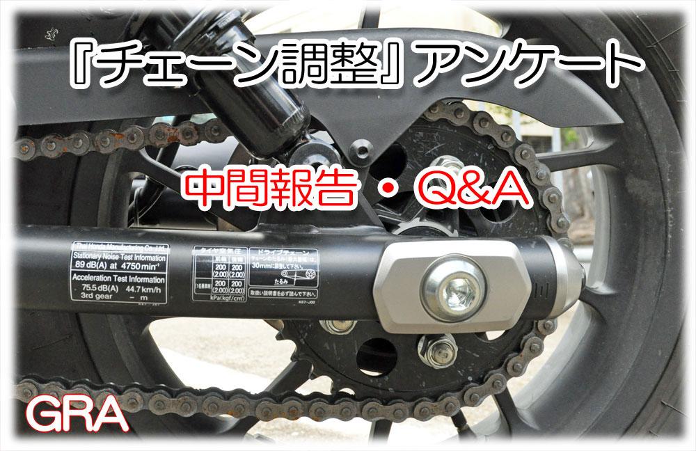 f:id:youkaidaimaou:20210608033051j:plain