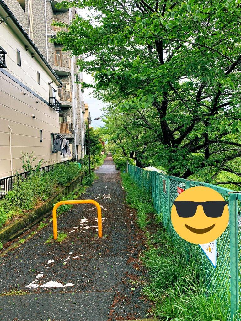 川沿いの散歩コース