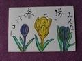 母の絵手紙
