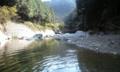川の中からw
