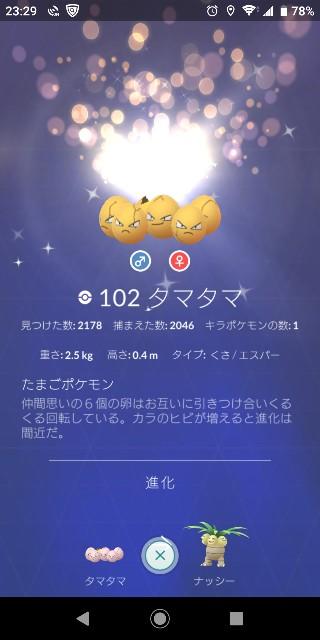 f:id:yousugitani:20190713153300j:image