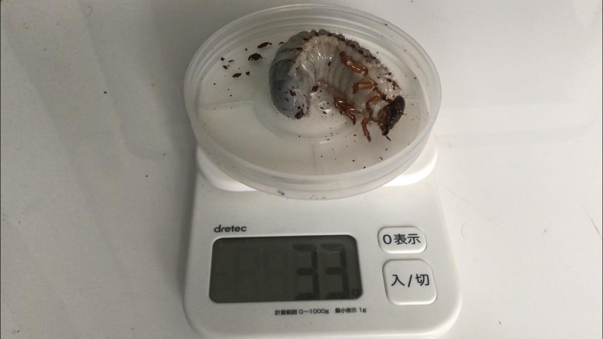 f:id:youwanna-beetles:20190509134507p:plain