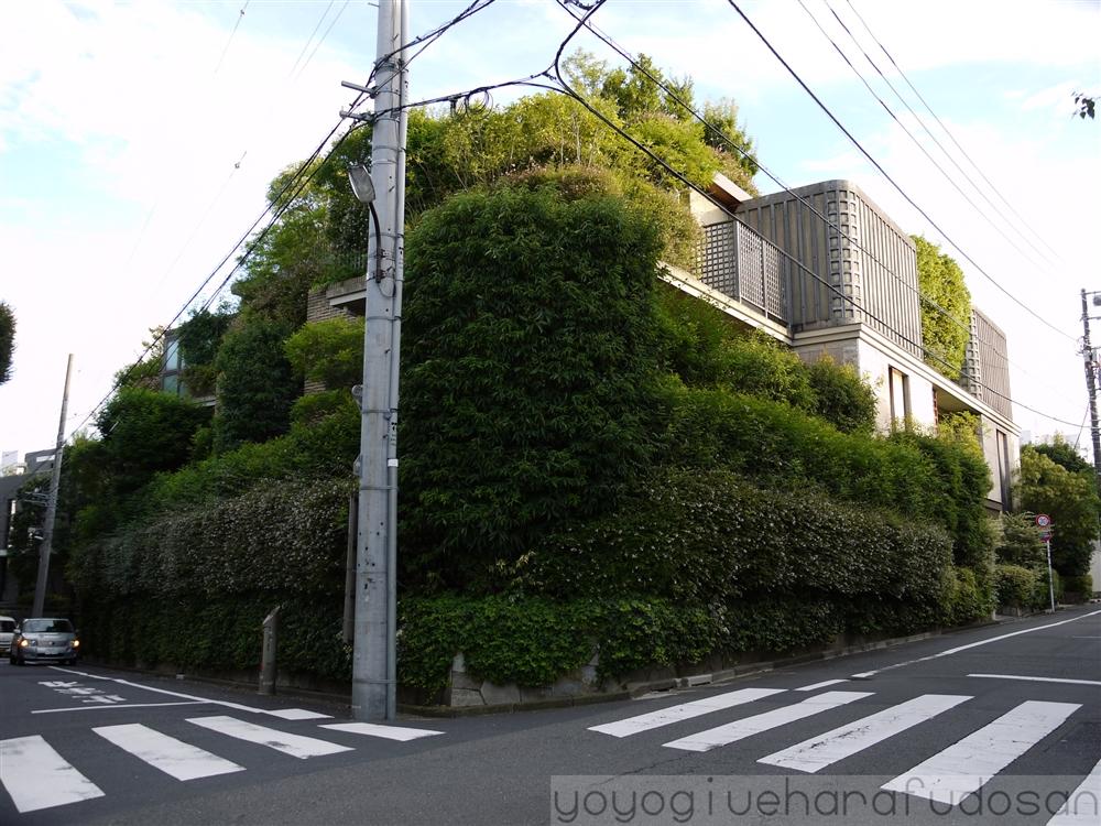 f:id:yoyogiuehararealestate:20160913090812j:plain