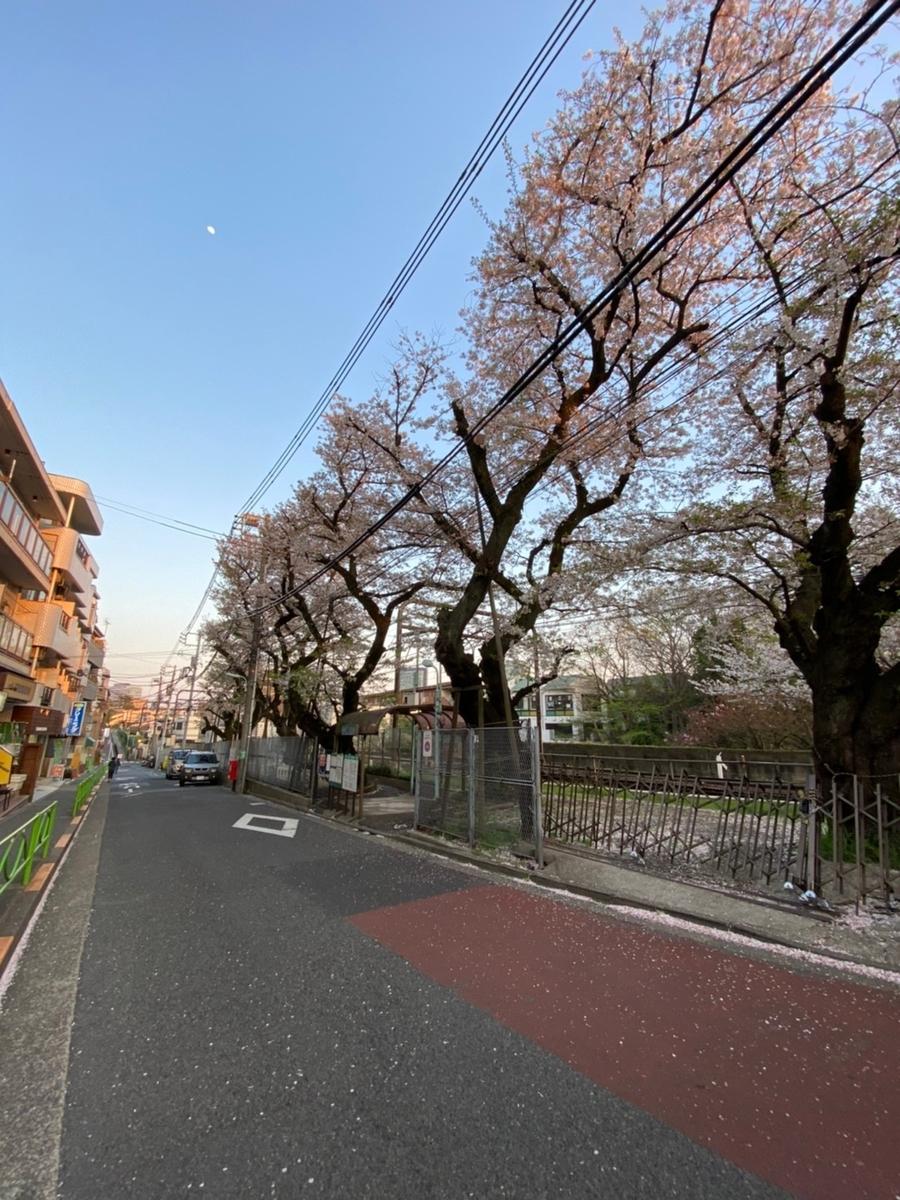 f:id:yoyogiuehararealestate:20200404192325j:plain