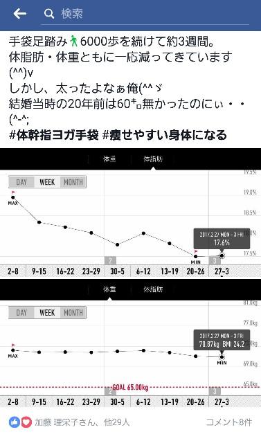 f:id:yoyoyo-kon5455:20170310092549j:image