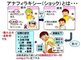 f:id:yseikei:20201210082346j:plain