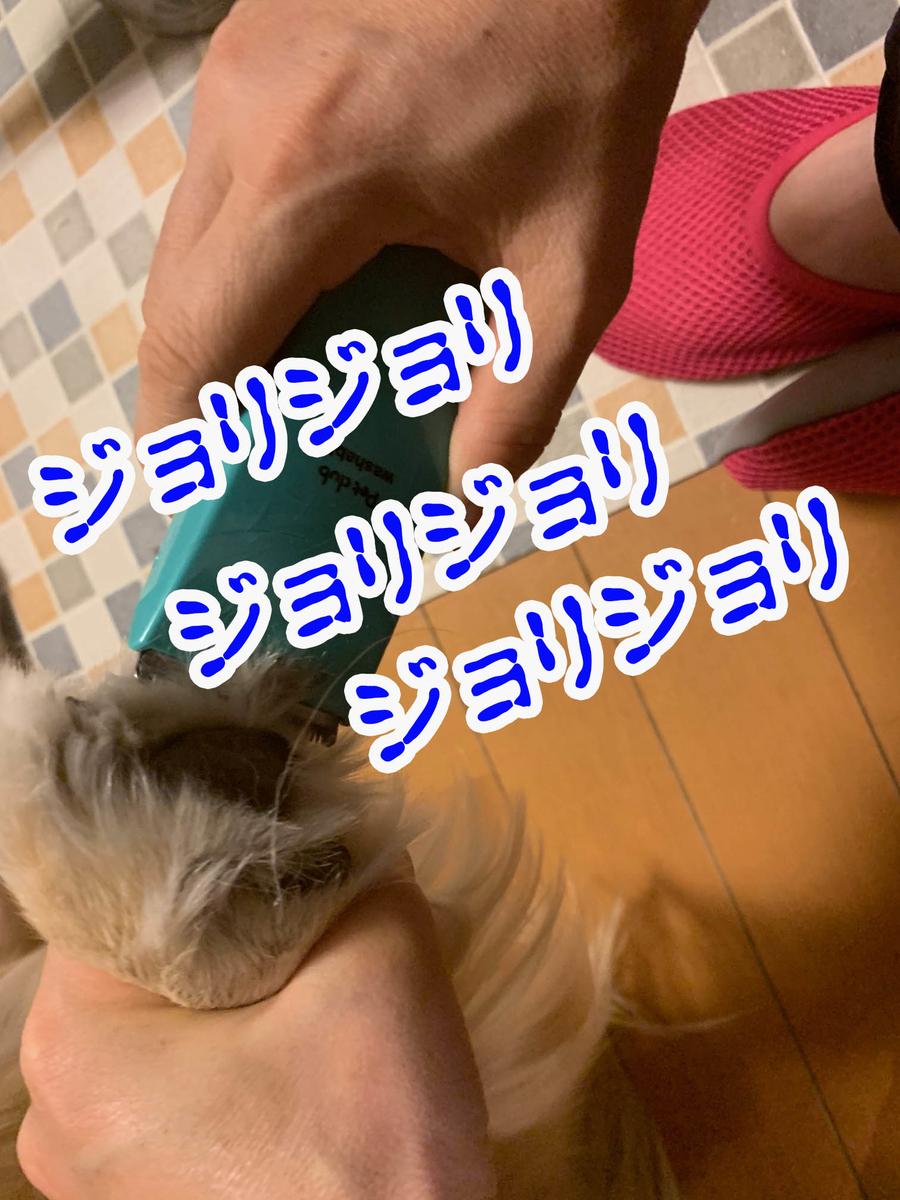 f:id:ysnyn658:20190620220830j:plain