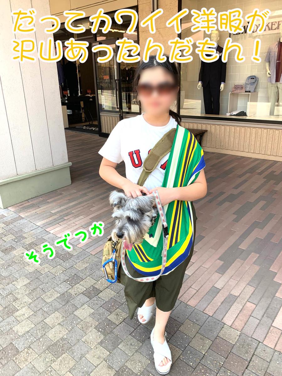 f:id:ysnyn658:20190809112754j:plain